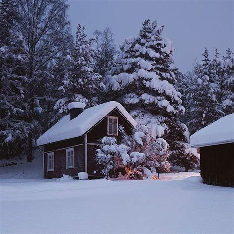 winter cabin cozy winter cabin snow