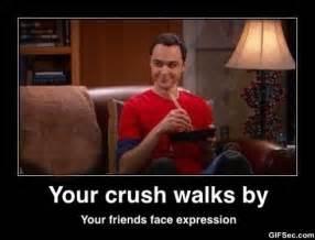 Cute Memes For Your Crush - sheldon meme jpg