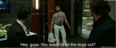 The Hangover Memes - the hangover movie meme let the dogs out tru calling thumb