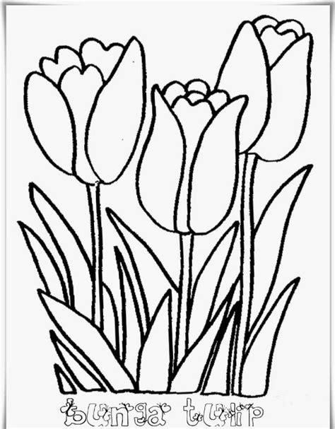 koleksi gambar sketsa lukisan bunga indah koleksi