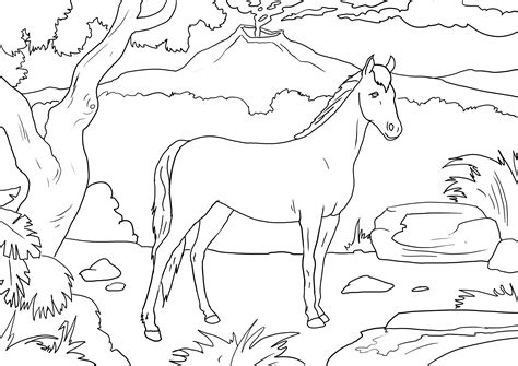 imagenes de paisajes sin color dibujo colorear 76 dibujo de animales para imprimir
