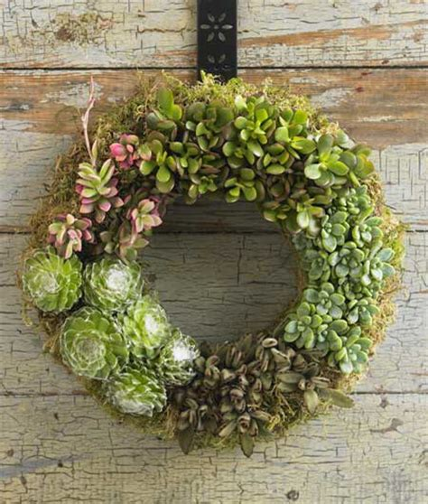 Succulents Garden Ideas 70 Indoor And Outdoor Succulent Garden Ideas Shelterness