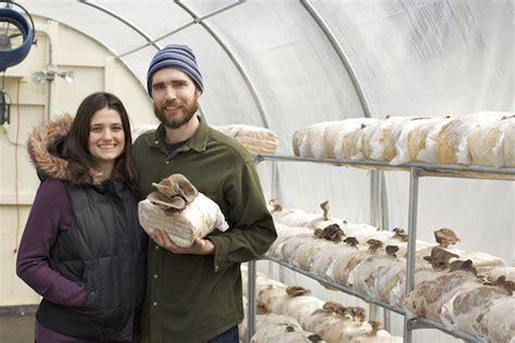 provisions mushroom farm edible seattle