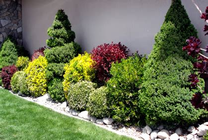 shrub design for front of house design shrubs front house idea home and house