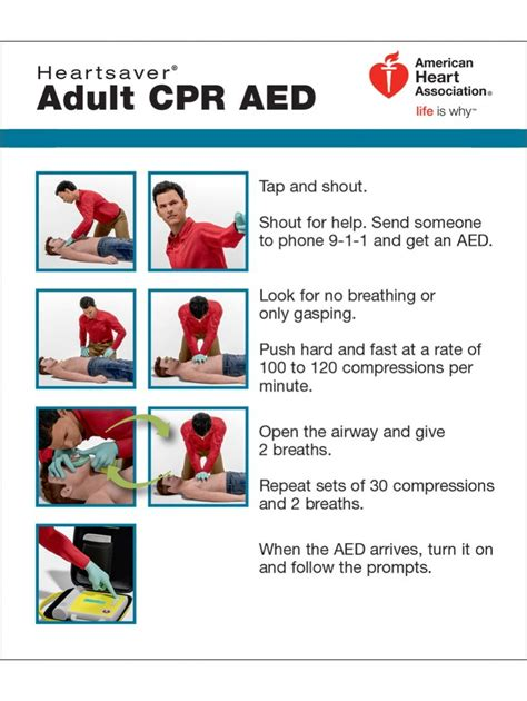 american association heartsaver cpr card template aha heartsaver cpr aed wallet cards 100 pack