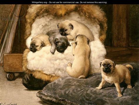 ancient pug ancient secret