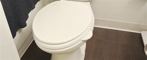 No More Feuds With The Toilet Seat Lifter by The Original Toilet Tabby The Revolution In Bathroom