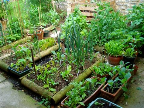 Permalink to raised garden bed layout – How to Plan a Vegetable Garden: Design Your Best Garden Layout