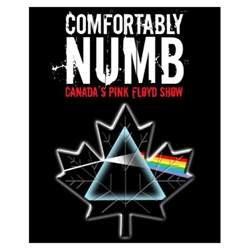 Comfortly The Art Of April Anna Interview With Comfortably Numb