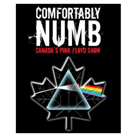 The Art Of April Anna Interview With Comfortably Numb