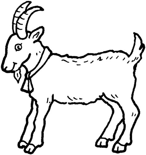 printable for kids com goat coloring free animal coloring pages sheets goat