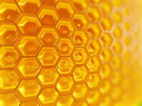 Honey Comb Honeycomb honeycomb kinetic