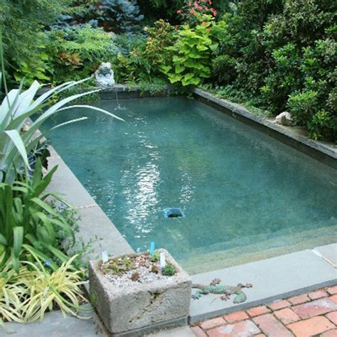 splash pool ideas best 20 splash pools ideas on pinterest mini pool