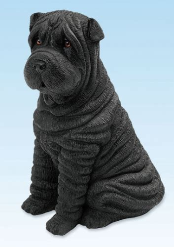 black shar pei puppy black shar pei puppy sitting