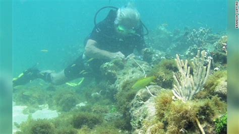 christopher columbus boat found wreck off haiti may be christopher columbus flagship