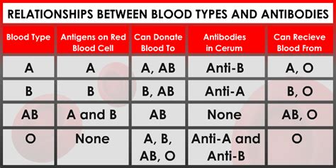 Blood Typr 3 7 interesting facts you need to about your blood type