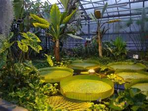 jardin botanique du montet photo de jardin botanique du