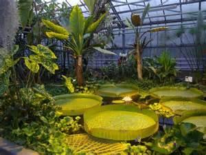 jardin botanique du montet picture of jardin botanique