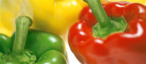 fruits s a corp scorpyus fruits s a limones naranjas y verduras de calidad