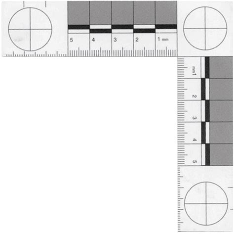 printable evidence ruler evidence collecting id kit lynn peavey company