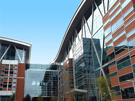 Mba Calgary Requirements by Post Secondary In Calgary