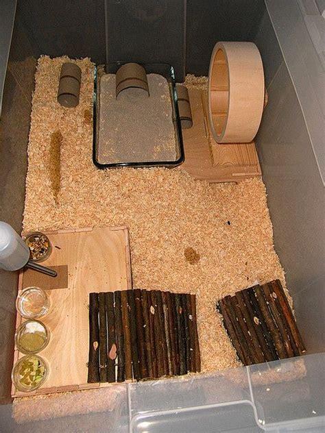 lada per terrario g 252 nstiges zwerghamster gehege aus ikea samla box 80x50cm