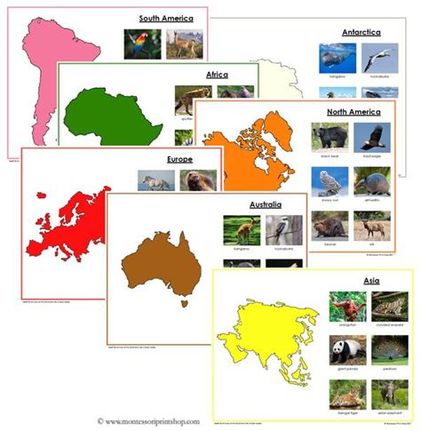 free printable montessori geography materials animals and map outlines for each of the 7 continents