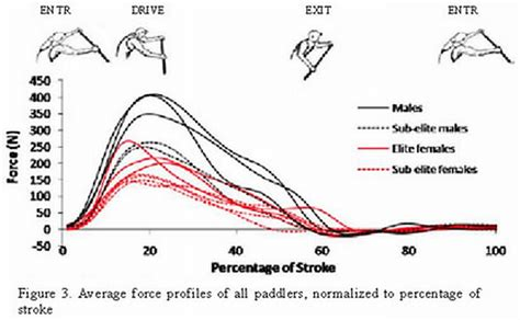 parts of a dragon boat stroke what are some ways that the power or force of a single