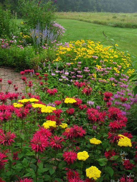 Butterfly And Hummingbird Garden Plans Butterfly1 Jpg Hummingbird Garden Flowers