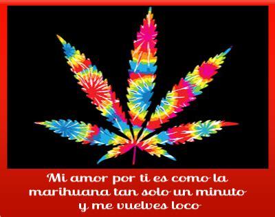 Imagenes De Weed Con Frases De Amor | im 225 genes de marihuana con frases bonitas para compartir