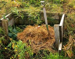12 things not to put in your permaculture compost pile