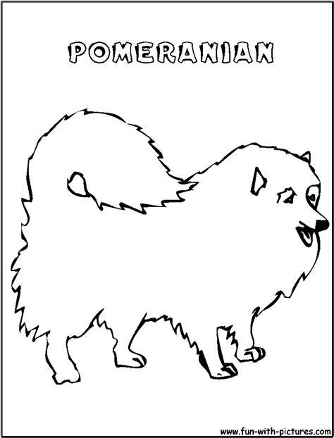 pomeranian coloring pages pomeranian coloring page