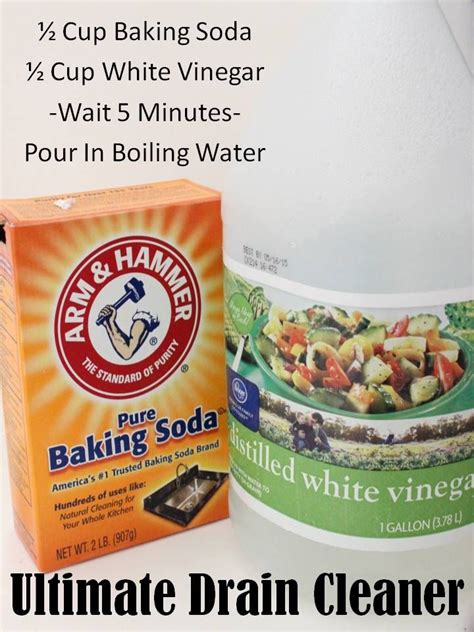 natural bathtub drain cleaner 25 best ideas about love my mom on pinterest love my