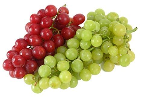 imagenes de uvas en hd productores dan la pelea por patentes de uvas en ee uu