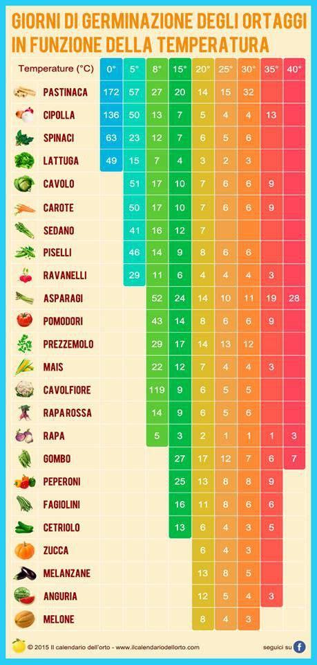calendario semina fiori oltre 25 fantastiche idee su giardinaggio su