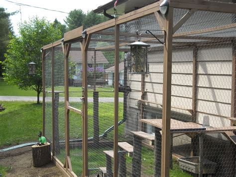 backyard cat enclosure how to build an outdoor cat enclosure or catioteediddlydee