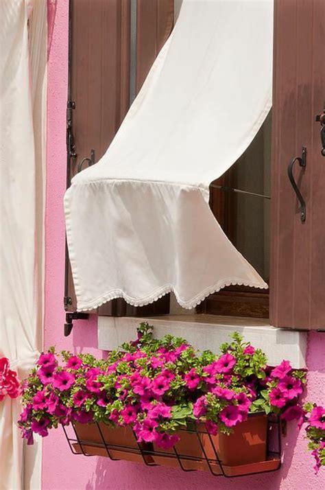 Schöne Balkonpflanzen pflegeleichte balkonpflanzen den balkon leicht und schnell