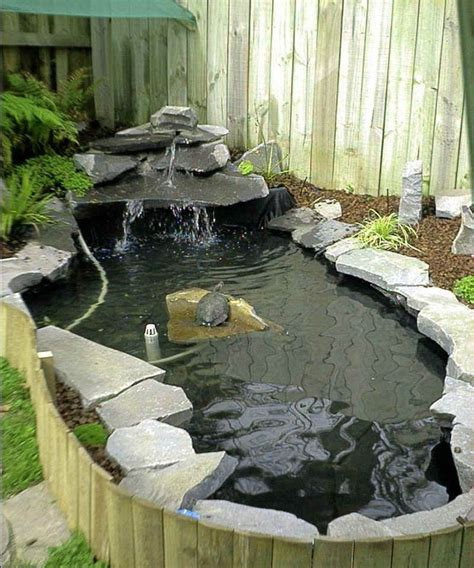 backyard turtle pond 100 ideas to try about new turtle habitat ideas turtles