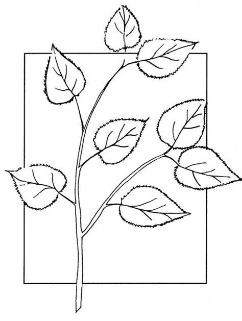 imagenes para colorear hojas dibujos de hojas para colorear imagui