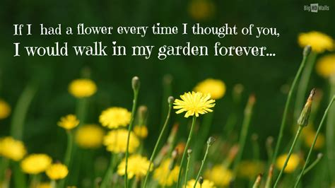 flower wallpaper with love quotes quotes about yellow flowers quotesgram