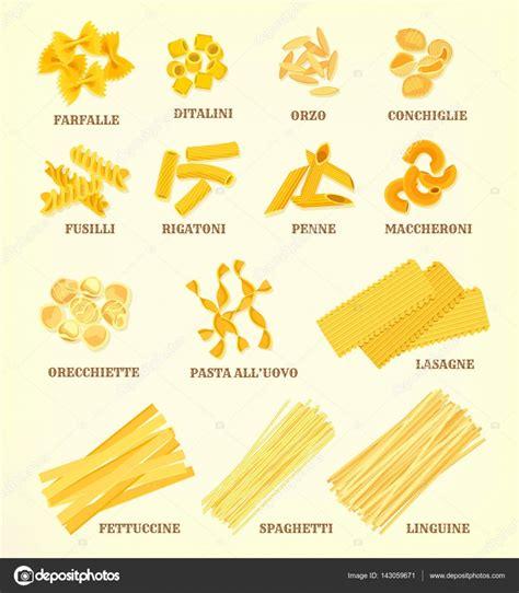 Maccheronier Macaroni Panggang Beef With Size Small italian pasta types or sorts vector icons stock vector 169 seamartini 143059671
