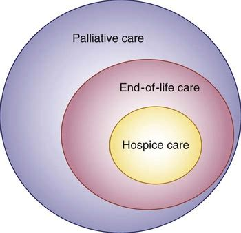 living at the end of a hospice addresses the most common questions books palliative care at end of key