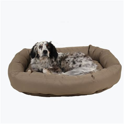 chew resistant dog beds brutus tuff chew resistant donut dog bed best of dog