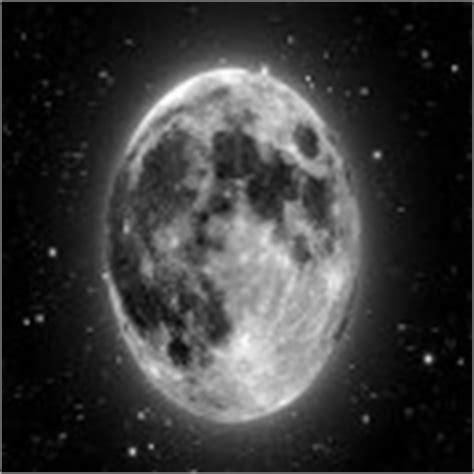 calendario lunar de siembra y trasplantes segn las fases calendario lunar de siembra y trasplantes seg 250 n las fases