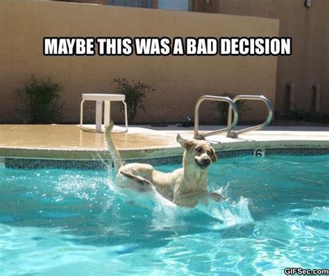 Meme Pool - bad decisions funny quotes quotesgram
