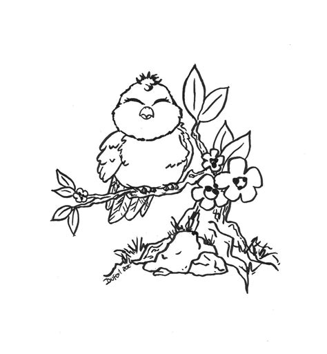 cute bird flowers branch adult coloring pages pinterest