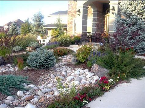 xeriscaped backyard design texas xeriscape landscaping front yard rocky landscape