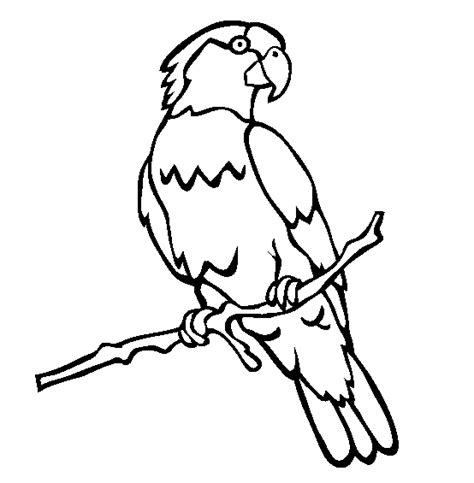 Parrot Coloring Pages 009 Macaw Coloring Page