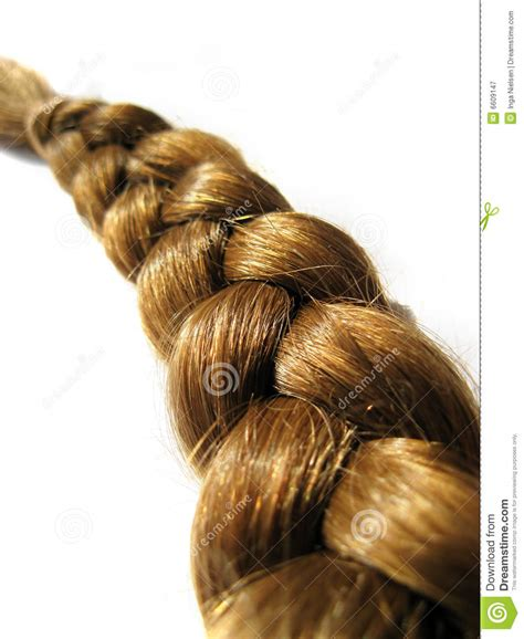hair bind download braid stock image image of bind closeup isolated hairs