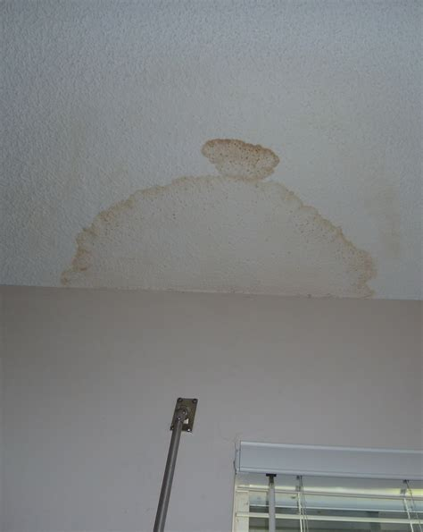 Ceiling From Leak by 5 Things Wise Renters Do When Looking At A Potential New